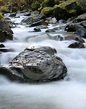 Cool Clear Creek Royalty Free Stock Images - Image: 6899489