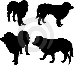 Four Dog Silhouettes Royalty Free Stock Image - Image: 6903976