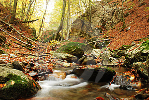 Autumn Scene Stock Photo - Image: 6909900