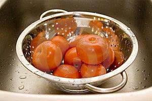 Tomatos Royalty Free Stock Photography - Image: 6916847