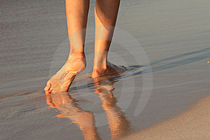 Walking On The Beach Stock Photography - Image: 6921242