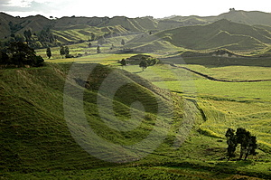 The Lost World, New Zealand Royalty Free Stock Image - Image: 6922846