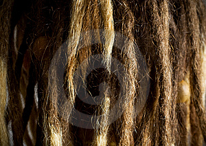 Dreads. Royalty Free Stock Image - Image: 6924236