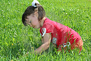 Little Girl Tear Flower Royalty Free Stock Photography - Image: 6928337