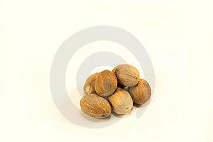 Nutmeg Stock Image - Image: 6931121