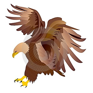 Eagle-vector Royalty-vrije Stock Fotografie - Beeld: 6932677