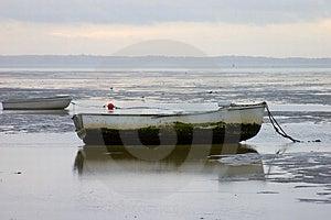 Row boats in early morning Royalty Free Stock Photos
