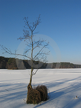 Lac winter. Photographie stock libre de droits