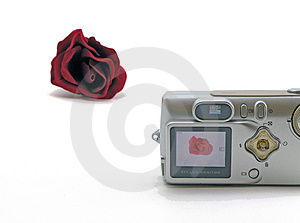 Digicam In Use Stock Image