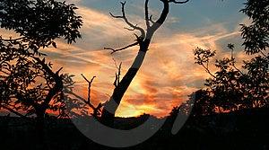 Por do sol 9 Imagem de Stock Royalty Free