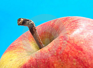 Braeburn Apple Stock Photos