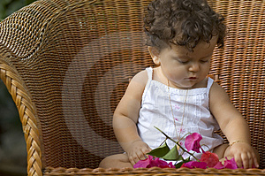 Child, Chair And Orchids Free Stock Images