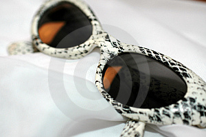 Snake Print Glasses Free Stock Photos