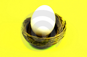 Nest Egg 3 Stock Photos