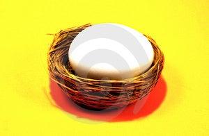 Nest Egg 4 Free Stock Photo