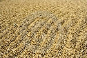 Sand and desert