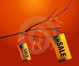 Shopping Concept Stock Image - Image: 7005741
