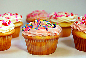 Pink and white cupcakes Free Stock Image