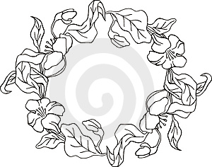 Floral Frame Series Stock Photo - Image: 7017030