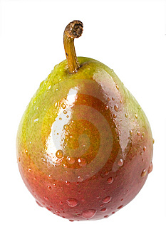 Wet Seckel Pear Royalty Free Stock Photos - Image: 7019448