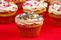Pink and white cupcakes Stock Image