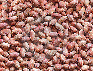 Nuts Stock Images - Image: 7027764