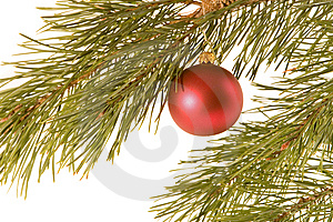 Christmas Ball On Fir Banch Stock Image - Image: 7031791
