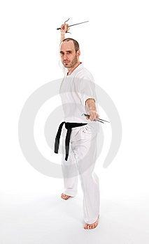 Martial Arts Royalty Free Stock Photo - Image: 7038125