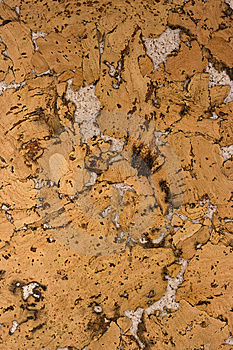 Cork Texture Royalty Free Stock Photos - Image: 7039498