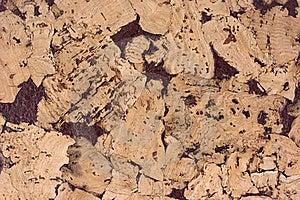 Cork Texture Stock Photo - Image: 7039620