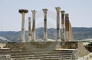 Roman Columns At Volubilis, Morocco Royalty Free Stock Photos - Image: 7040118