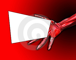 Muscle And Bone Hand With Blank Sign Royalty Free Stock Photos - Image: 7047538