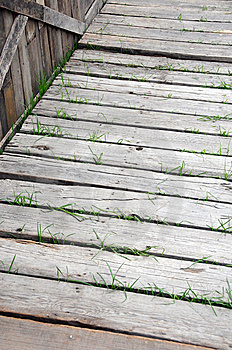 Wooden Walkway Stock Image - Image: 7052991