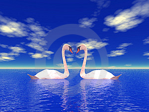 Nature And Swans Stock Photography - Image: 7065772