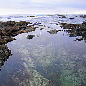 Tide Pools Royalty Free Stock Photography - Image: 7067447