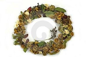Circle Flower Royalty Free Stock Images - Image: 724869