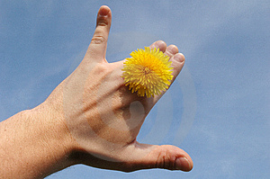 Sun Between Fingers Stock Image - Image: 729831