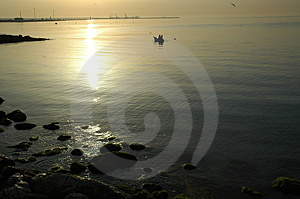 Fishing In Italy At Dawn Royalty Free Stock Photo - Image: 757175