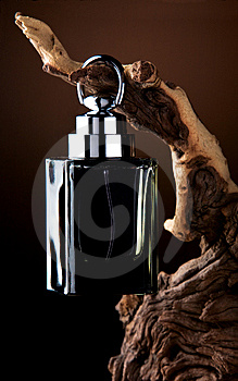 Black Perfume Bottle Free Stock Photo