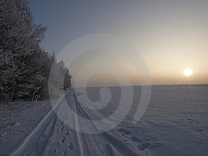 Tracks Royalty Free Stock Images - Image: 7704239