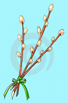 Easter Bouquet Of Willow Royalty Free Stock Photography - Image: 7704397