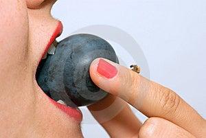 Girl Eating Plum Closeup Royalty Free Stock Photo - Image: 7712945