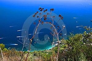 Capri Stock Images - Image: 7715554