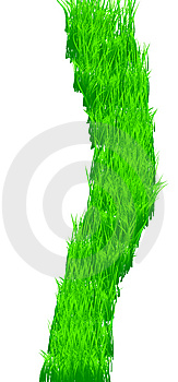 Green Grass Texture Stock Image - Image: 7725141