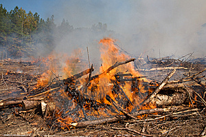 Flames And Smoke From A Prescribed Fire Burn Stock Photography - Image: 7730662