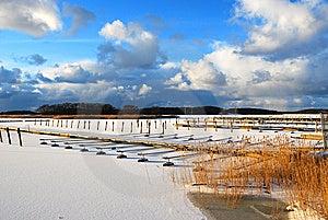 Frozen Buoys Royalty Free Stock Photo - Image: 7737865