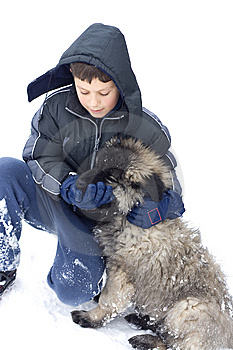 Boy And Dog Royalty Free Stock Photo - Image: 7740985