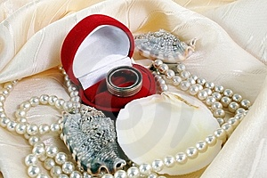Wedding Rings Royalty Free Stock Images - Image: 7754069