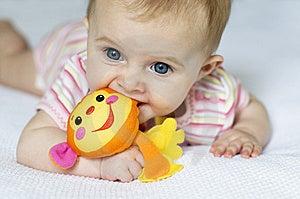 Little Girl With Monkey Stock Photo - Image: 7759880