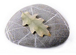 Stone With Dry Leaf Royalty Free Stock Photo - Image: 7768395